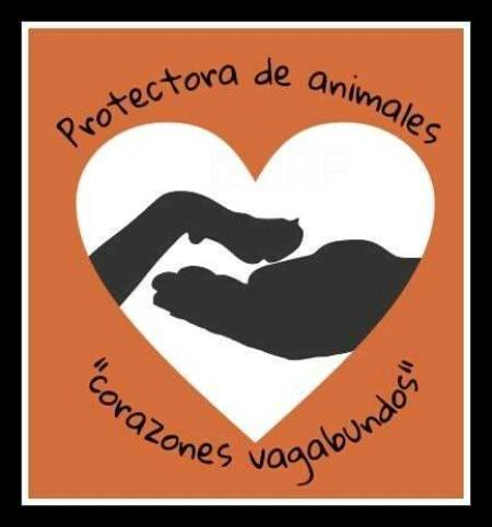 """ONG protectora de animales """"Corazones Vagabundos"""""""
